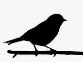 Odpuzovače ptáků