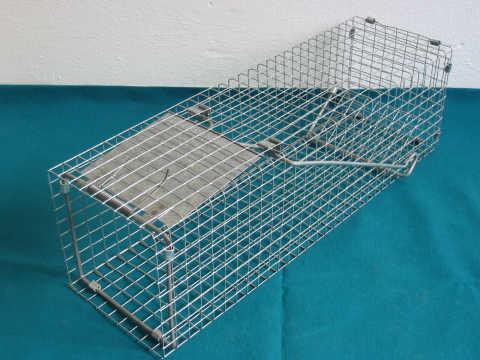 Past - sklopec na lasičky a potkany - 15x15x48 cm