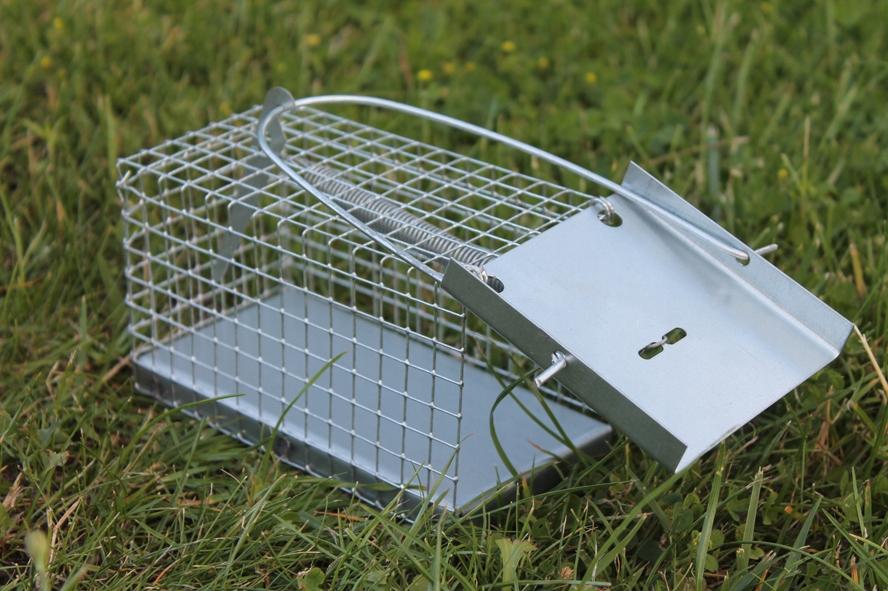 Sklopec na myši a hraboše - živolovná past 15x8x8 cm
